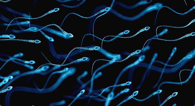 Спермограма. 6 фактів про сперму